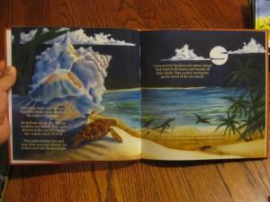 nicaragua sea turtle children's book