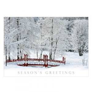 snowy scene christmas cards